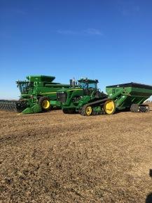 The corn crew