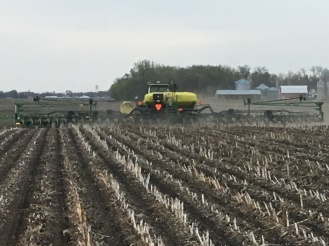 Planting corn into fall zones